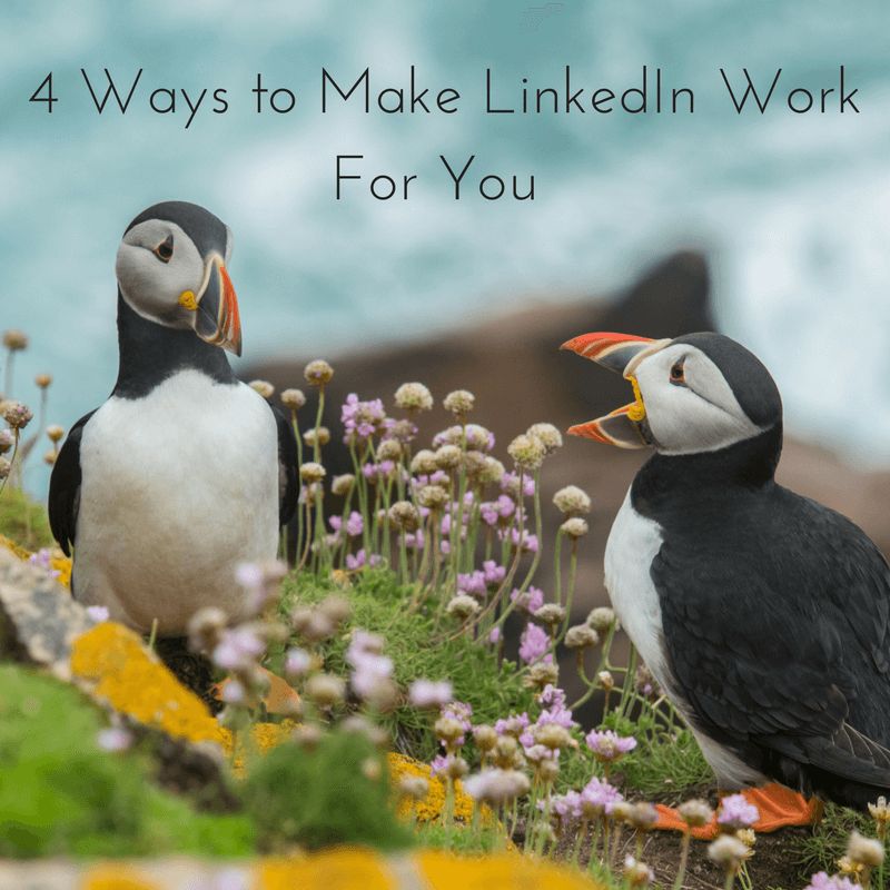 Images illustrating blog by SEO experts in Lancashire, GrowTraffic, on 4 ways to make LinkedIn work harder.