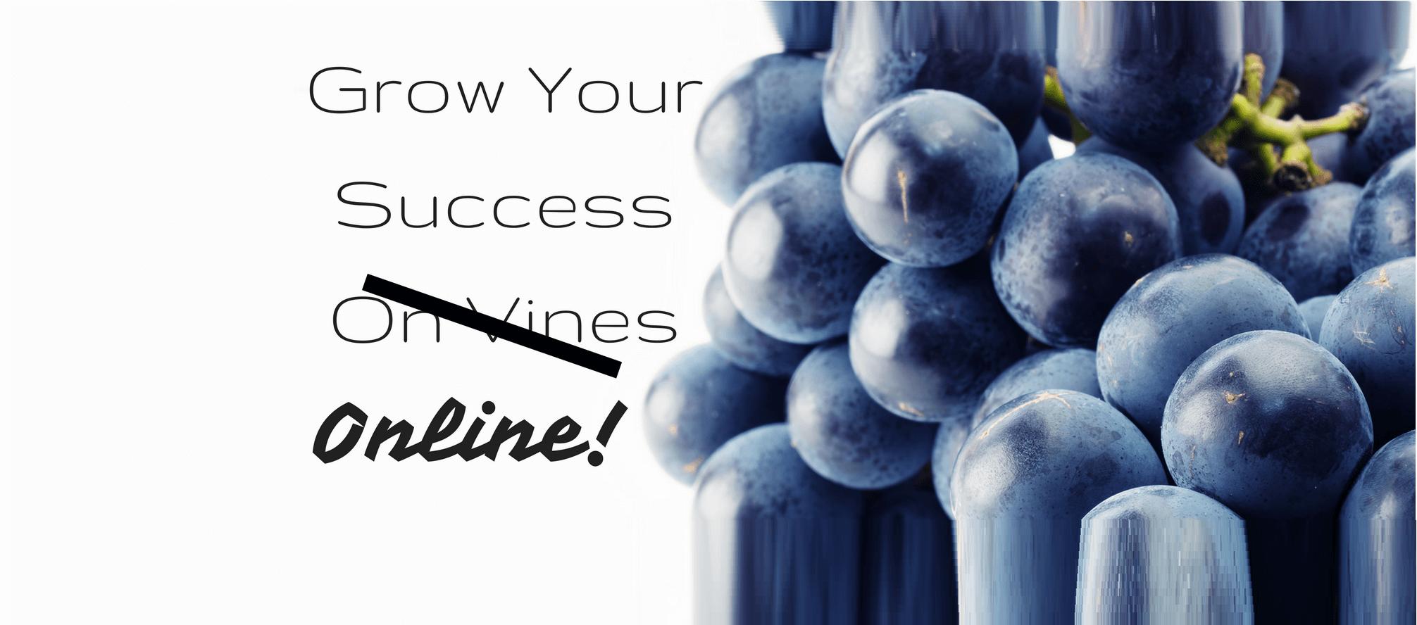 Grow Traffic Online - Not On Vines