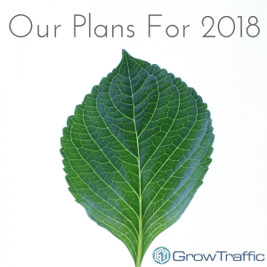 GrowTraffic Plans for 2018, GT Plans for 2018, 2018 Plans, Year Ahead, GrowTraffic, GrowSkills, GrowKnowledge, New Website, New Branding, Rebranding, Digital Marketing, SEO, SEO Copywriting, SEO Marketing, Blogs, SEO Consultants